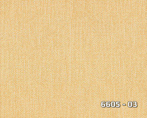6605 03.index