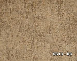 6613 03.index