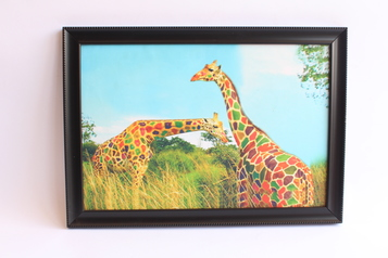 buy Colorful Giraffe Painting 12x18