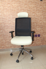 buy Oasis white & Black Office Single Chair 09