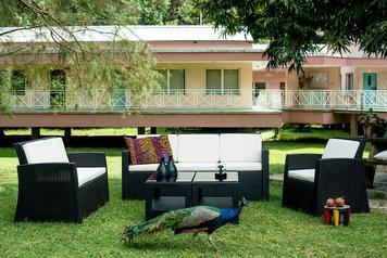 Panama rattan garden furniture dining homewox1.index