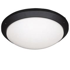 buy CASABLANCA Wall Lantern Black -71416/01/30