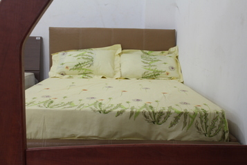 buy Brown Leather Bed